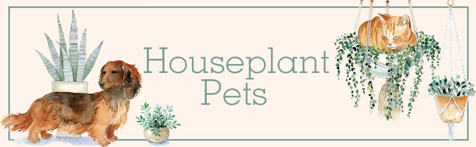 Houseplant Pets